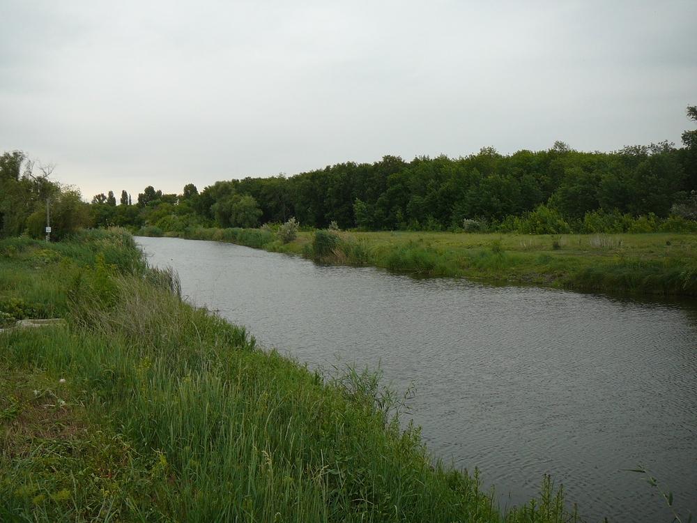 Энгельс озеро Кривенькое