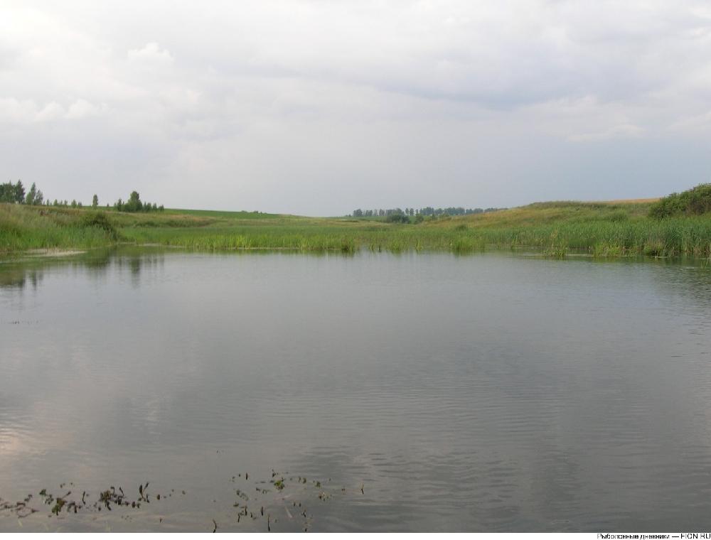 Каскад прудов и плантация Остапенко