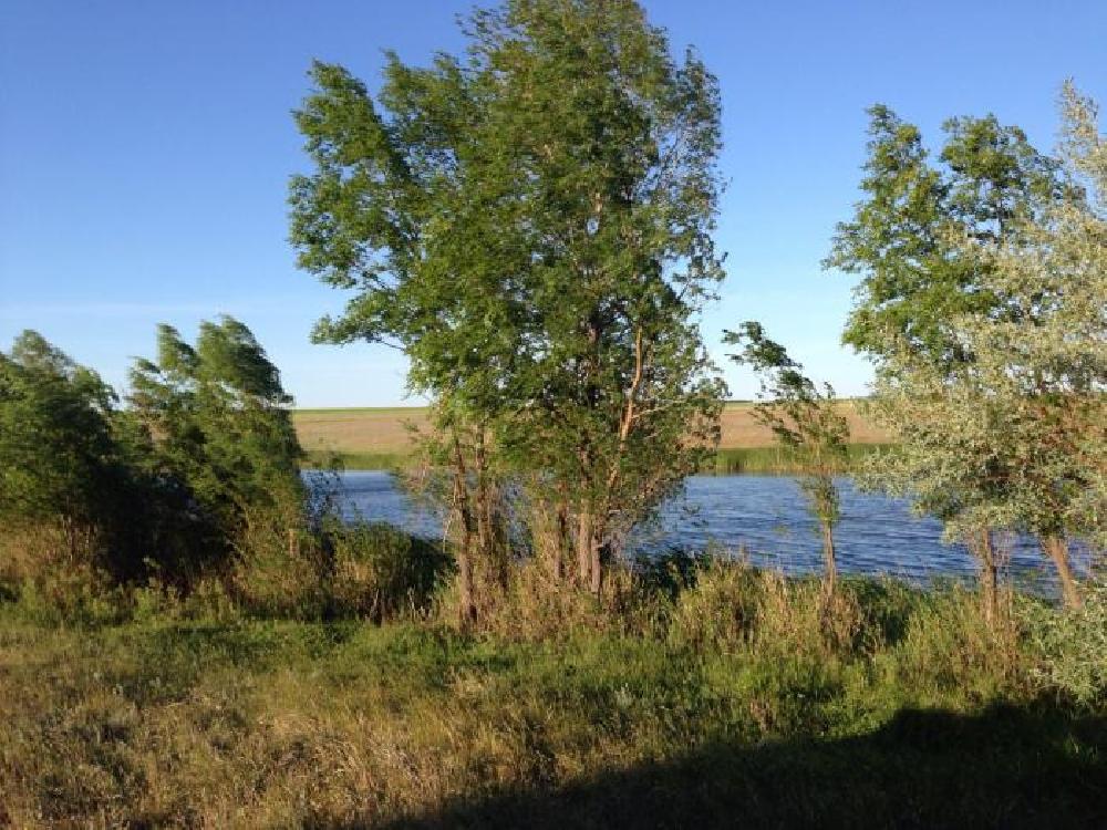 Озеро Лисье