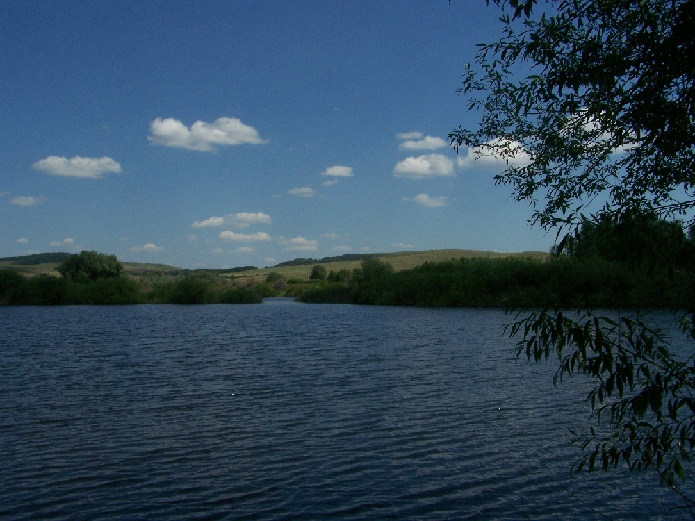 Афанасьевский пруд