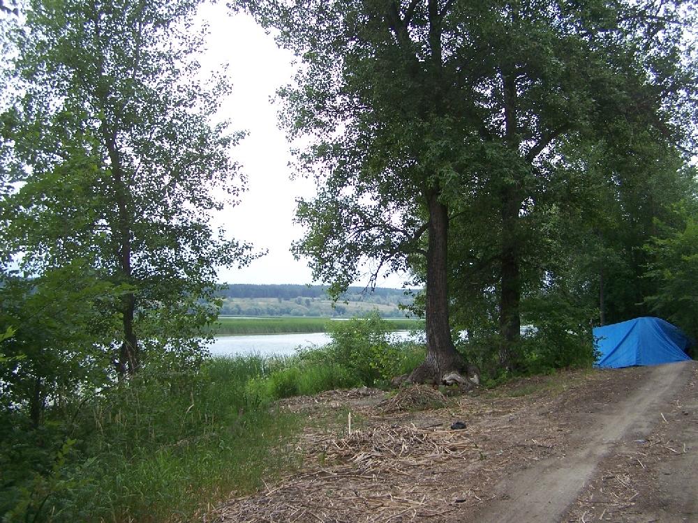 Усовский берег реки Терешки