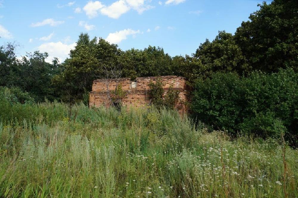 Руины Щербиновской барской усадьбы