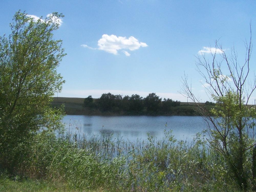 Диковский пруд