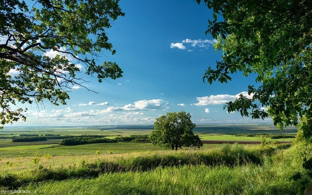 Самые интересные природные достопримечательности Саратовской области