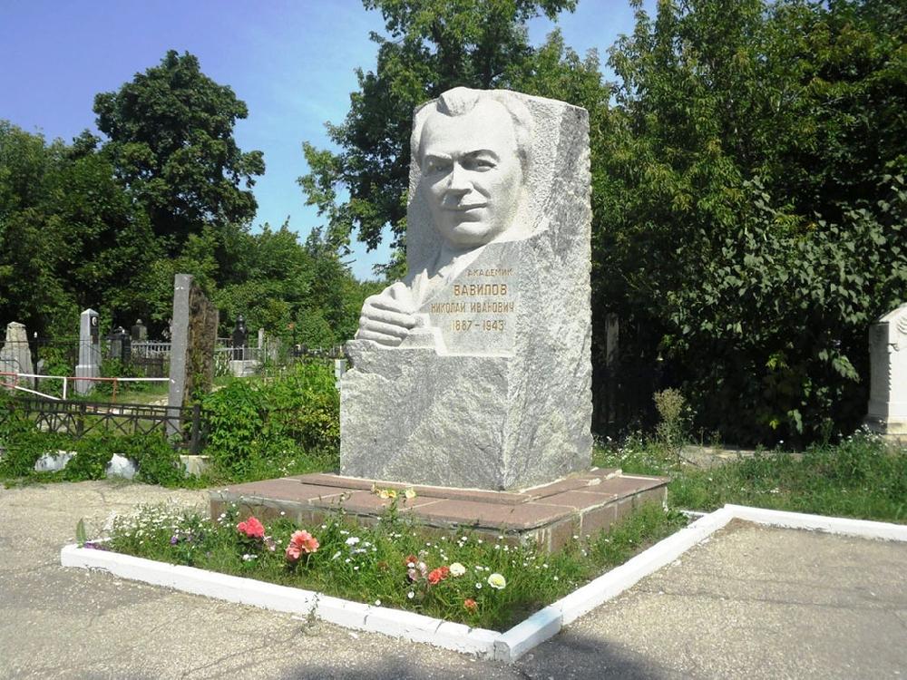 Памятник Н. И. Вавилову на Воскресенском кладбище