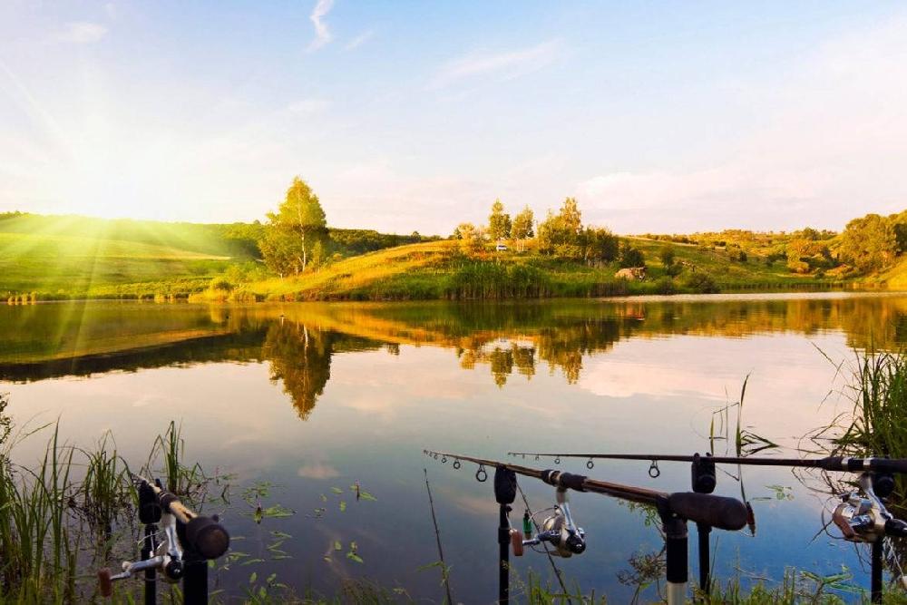 Правобережье бесплатные места рыбалки