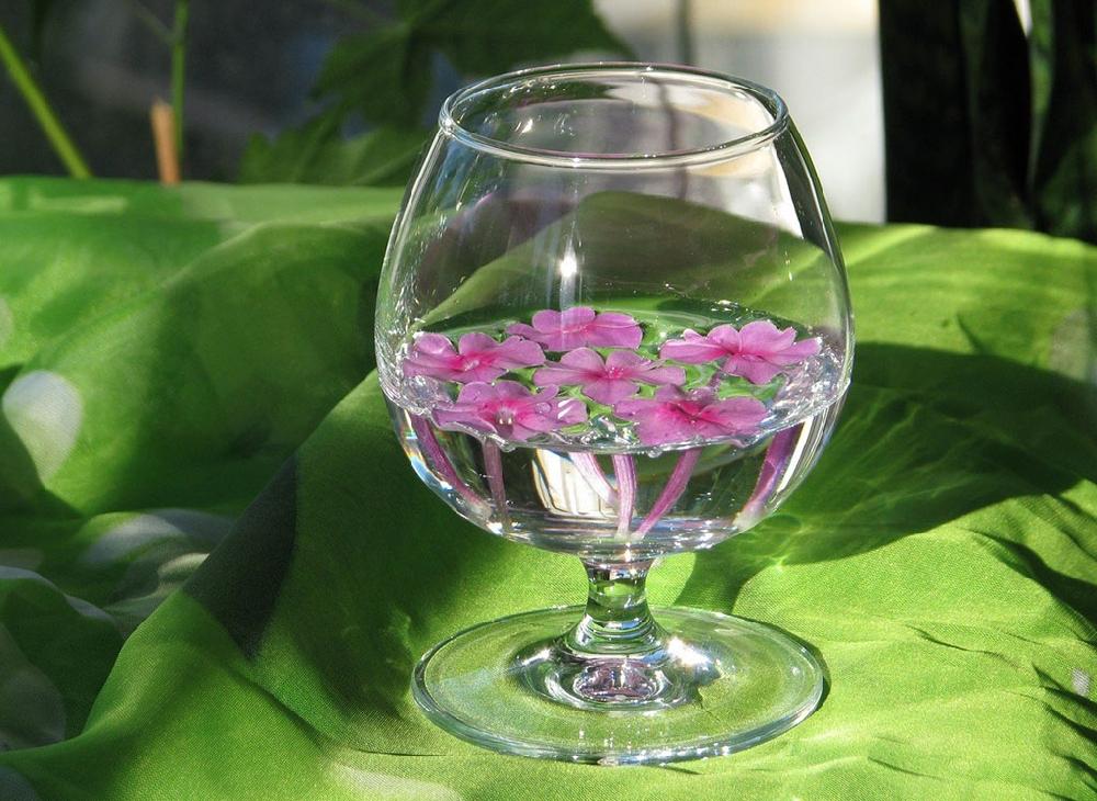 Цветочное вино - технология изготовления и примеры