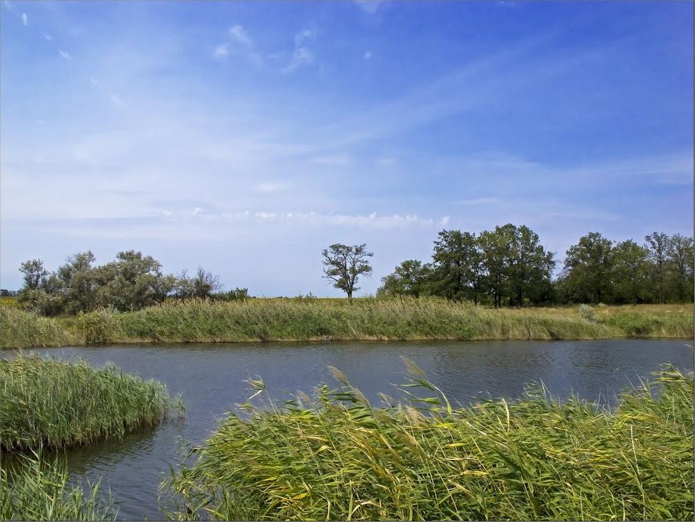 Шульгин пруд