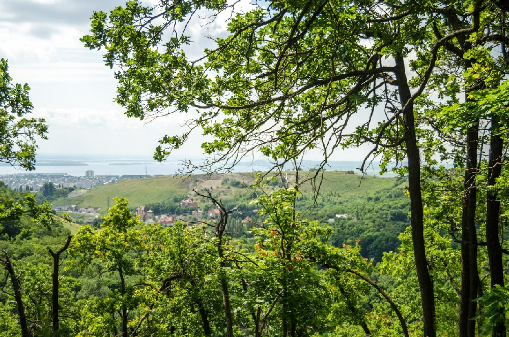 Красивые места для фотосессий и прогулок в Саратове и Энгельсе