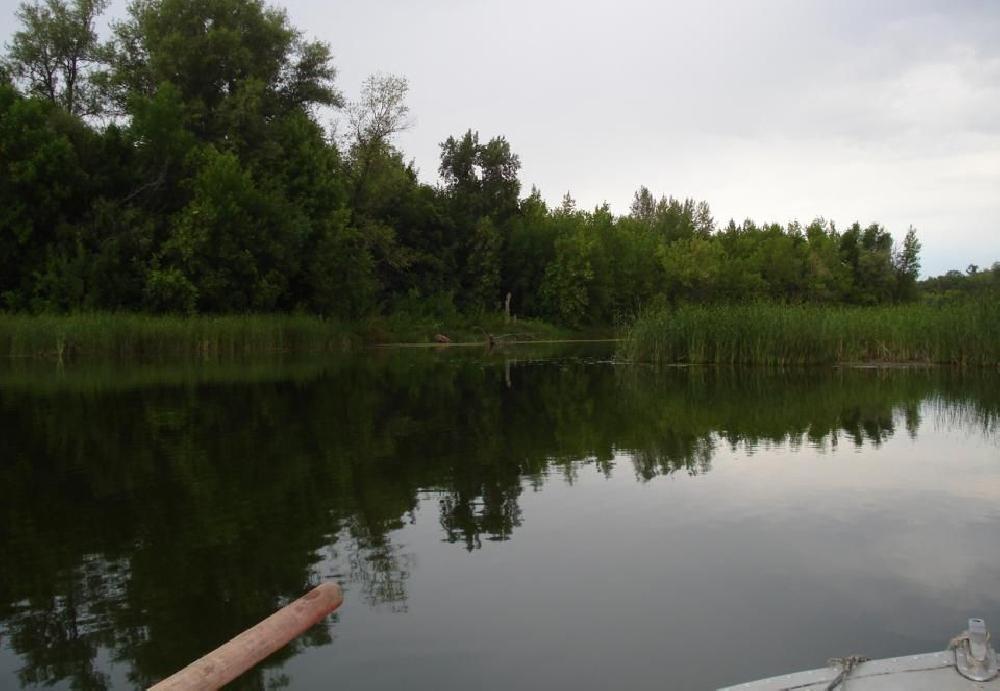 Павловское водохранилище