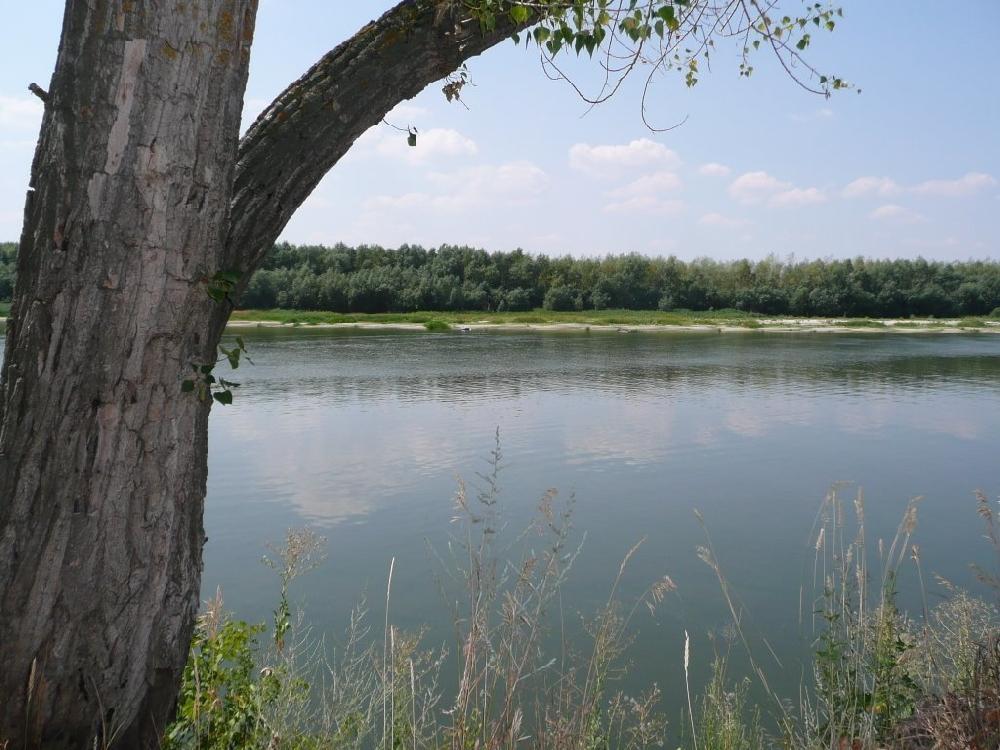 Протока Бордовская