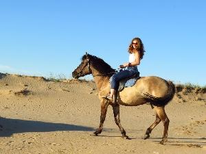 """Конный клуб """"Добрая Лошадь"""""""