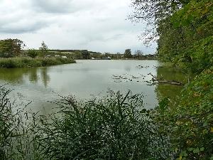 Казариновский пруд