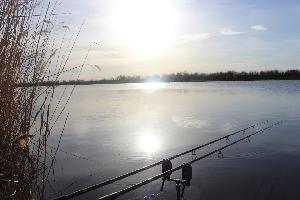 50 лучших мест для бесплатной рыбалки в Саратовской области