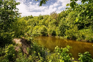 Места для отдыха с палаткой на реке Медведице