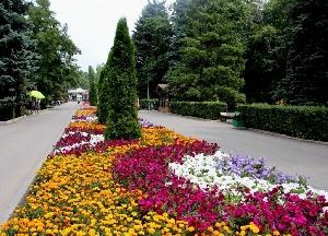 Скверы и парки Саратова