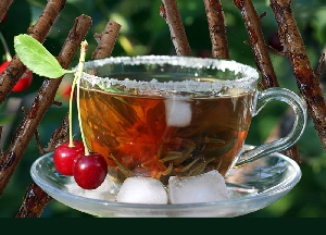 Чай из веток деревьев и кустарников: как заваривать, чем полезен