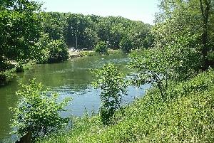 Андреевские пруды