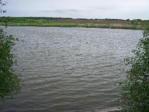 Пруд Широкий ручей