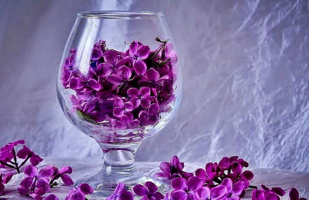 Сбор сырья для цветочных вин