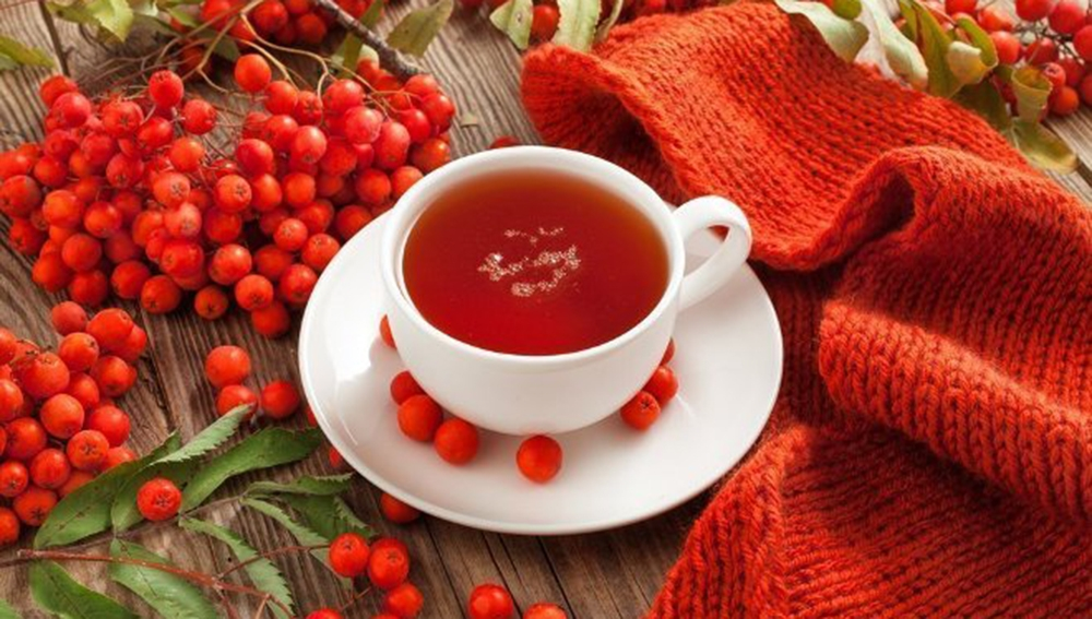 Чаи из рябины