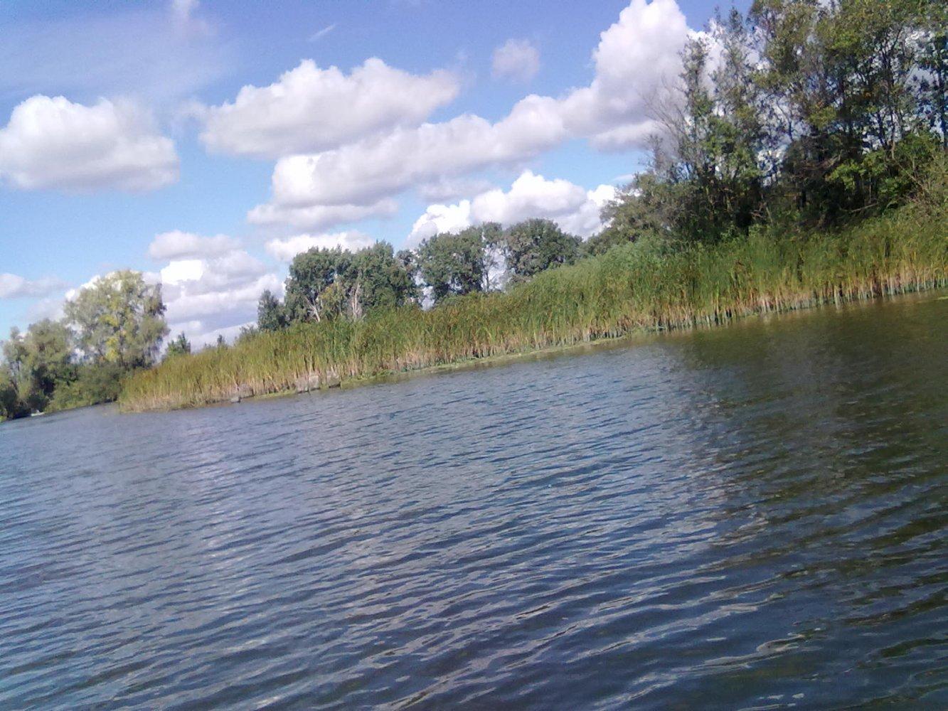 Остров Воронок озеро Кокинское