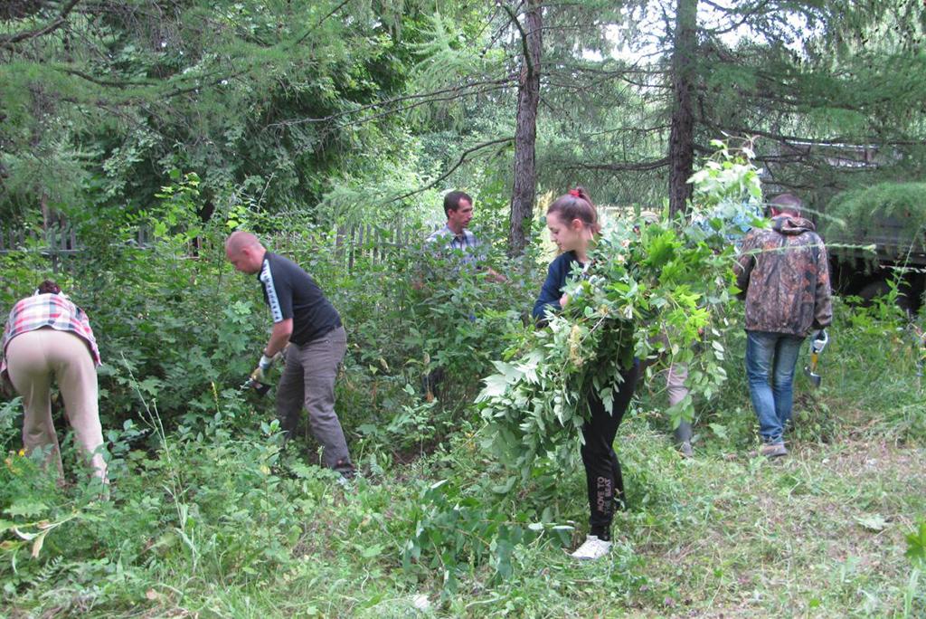 Дендрарий Вязовского учебно-опытного лесхоза