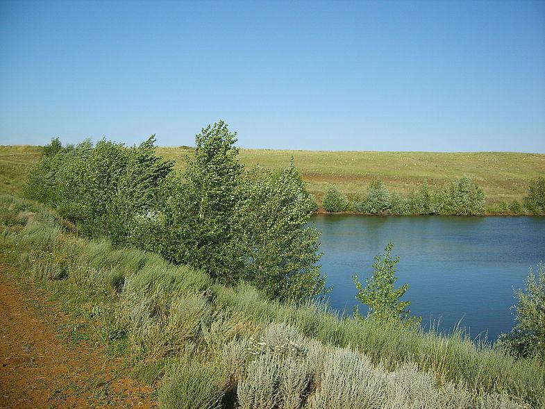 Тимерязевский пруд
