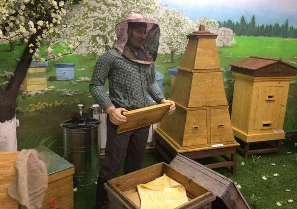 Музей Пчелы
