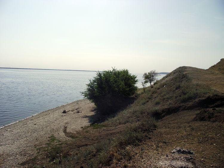 Судачий берег