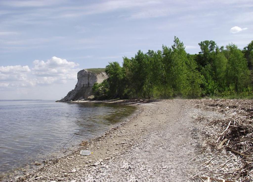 Пионерский залив