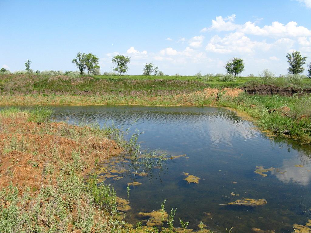 Протока и пруды Сухая Грязнуха
