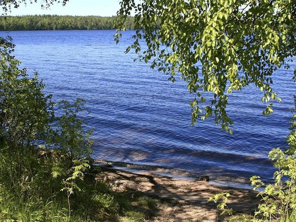 Энгельс озеро Пионерское