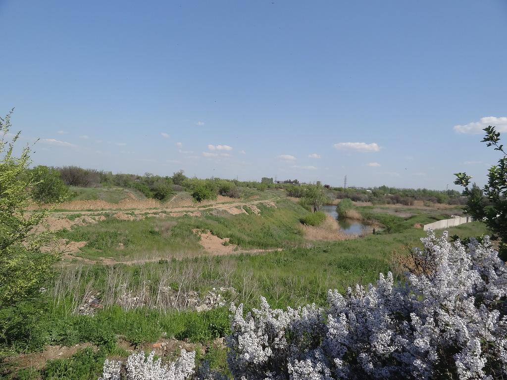 Анисовские пруды