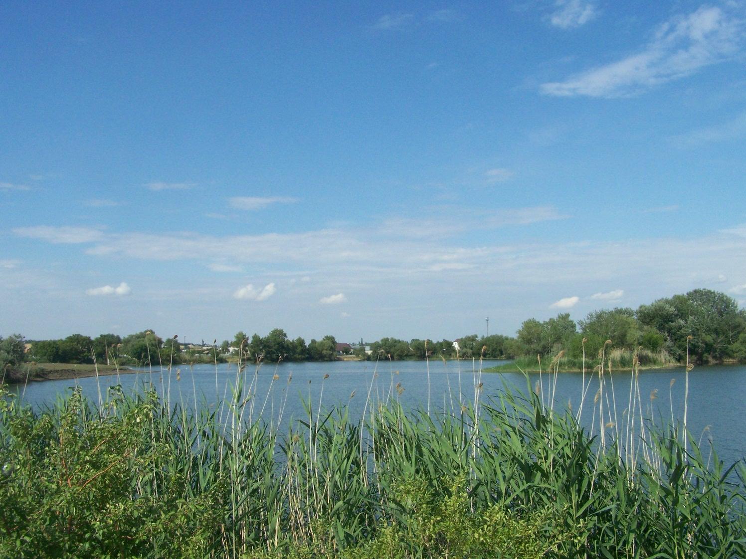 Шевыревский пруд