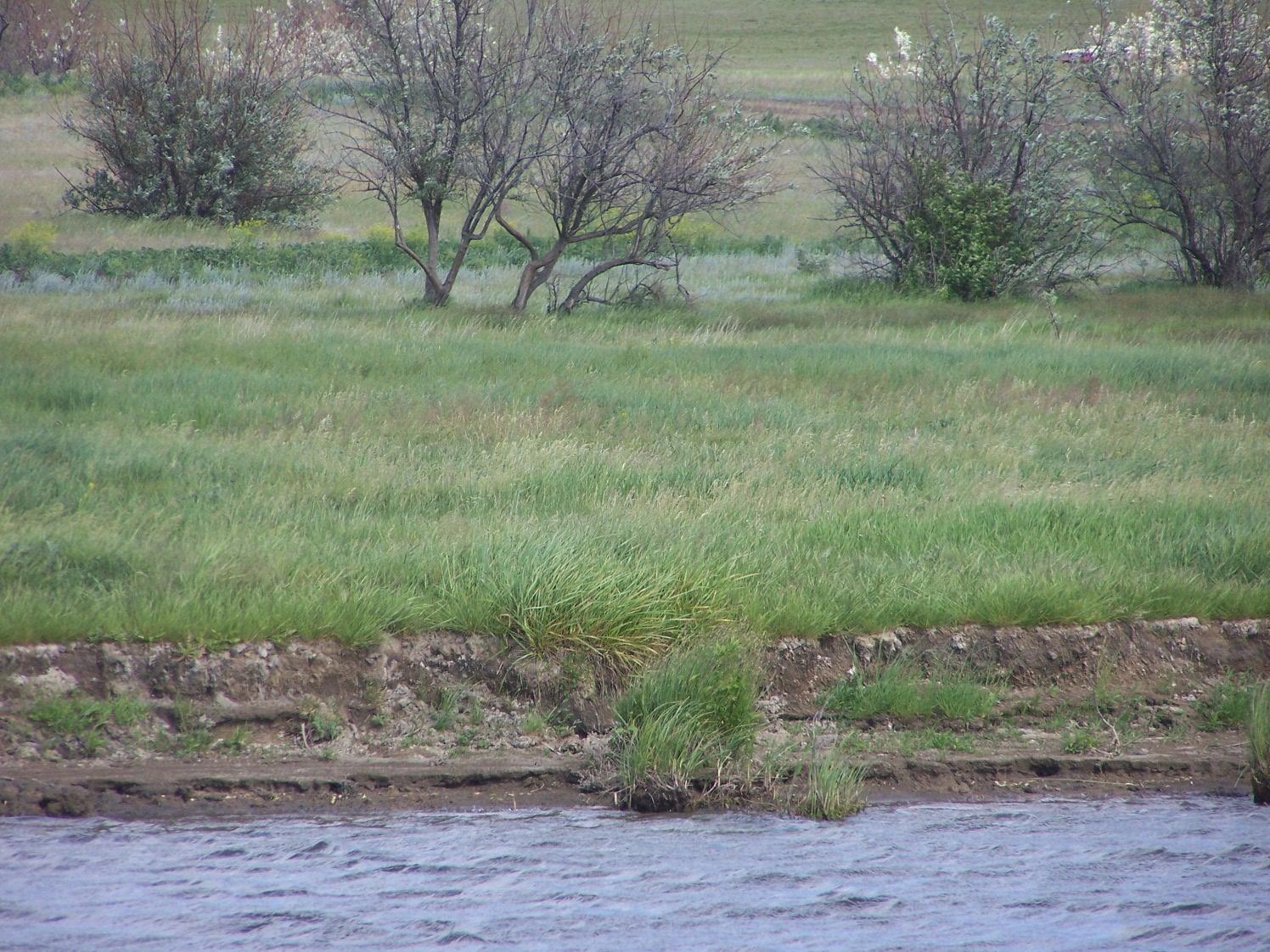 Свинцовский пруд