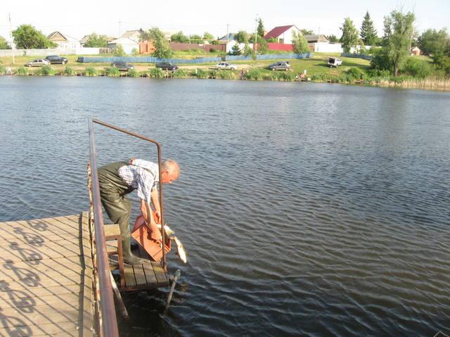 Первый пруд Дубки