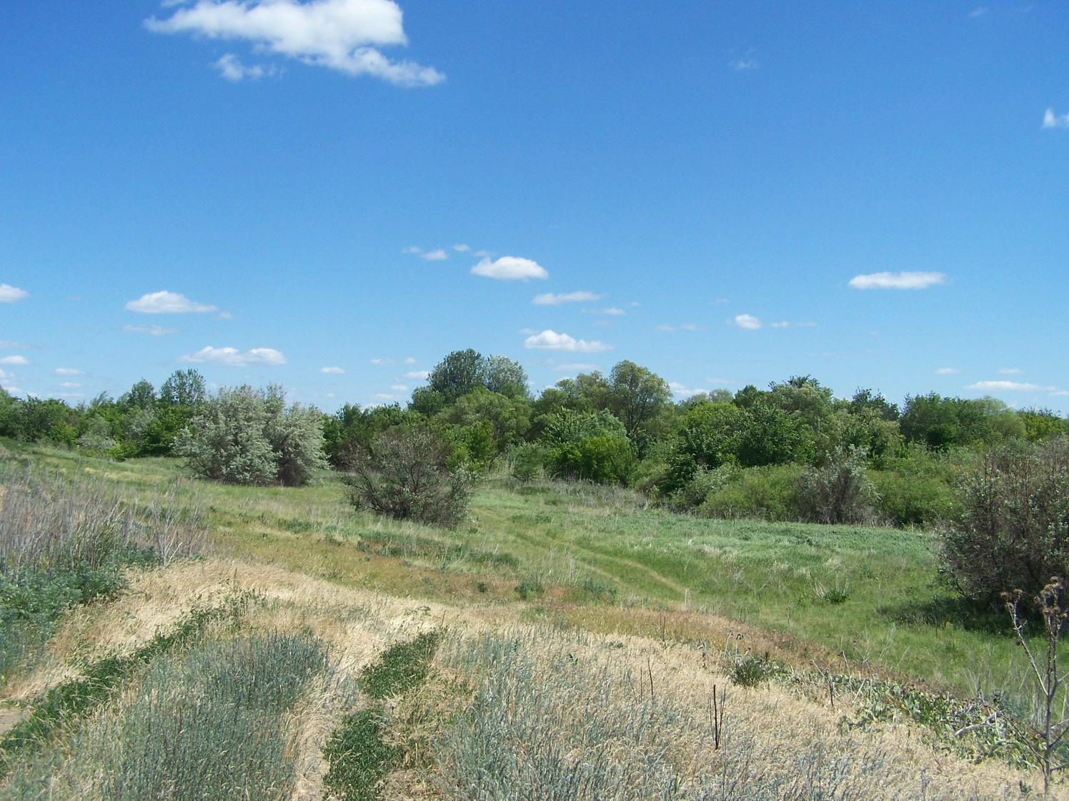 Живописная поляна у старого моста