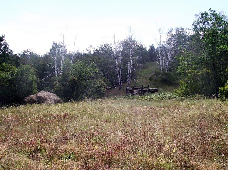 Медведицкая гряда и Урочище Синяя гора