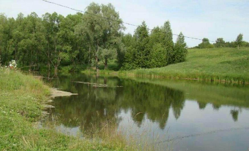 Бобровский пруд