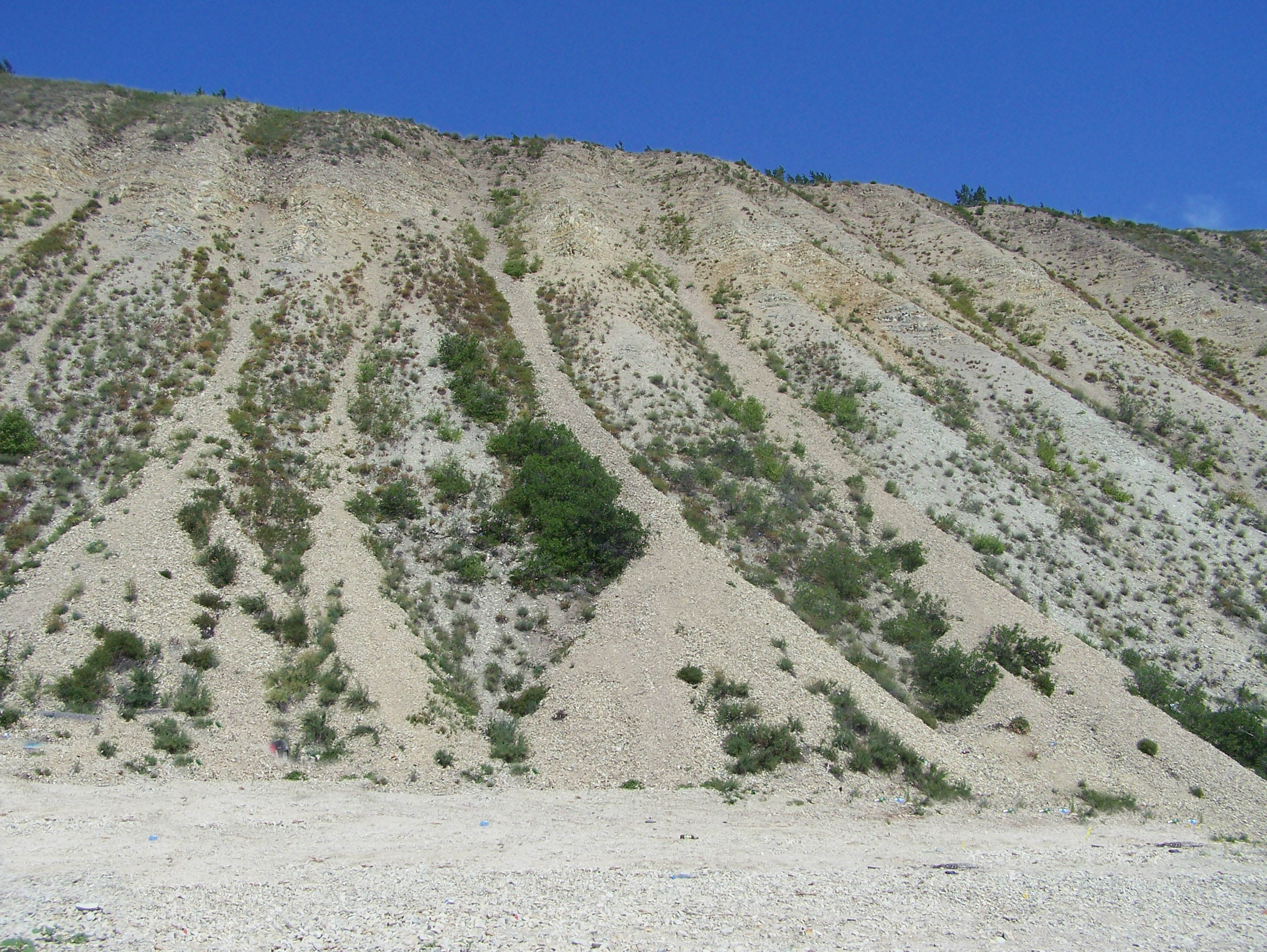Змеевы горы Воскресенский берег