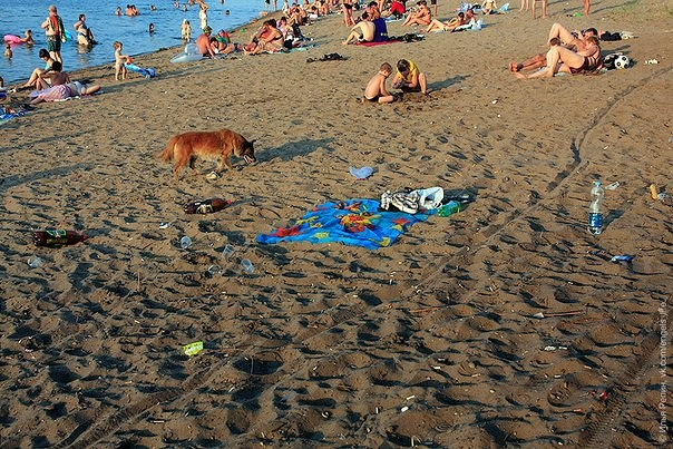 Энгельские дикие пляжи