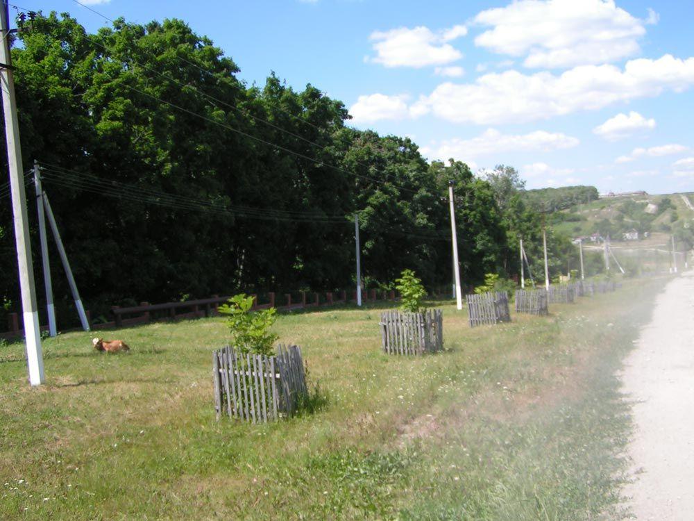 Полчаниновский приусадебный парк