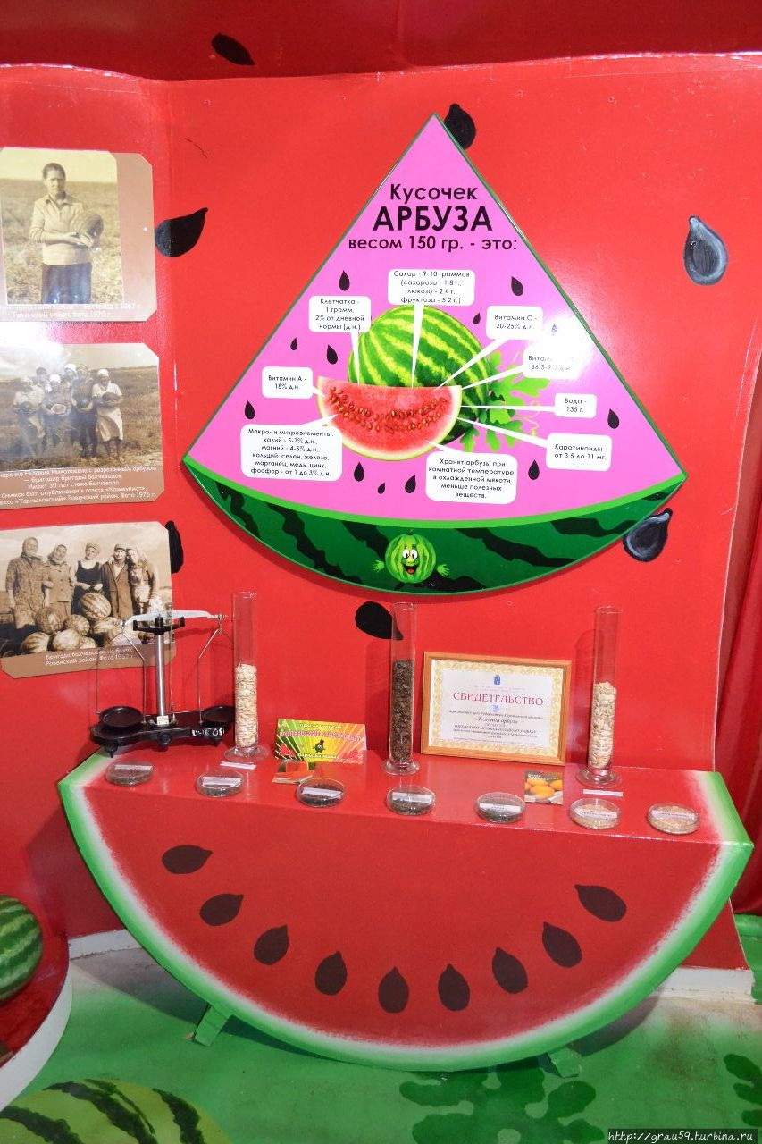 Музей Арбуза
