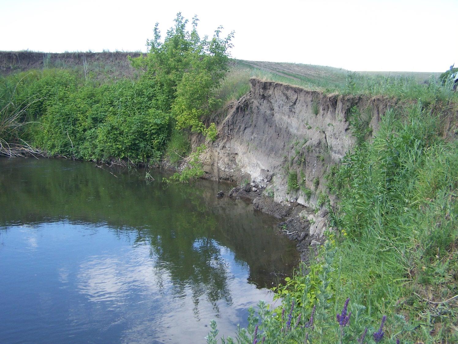 Большая закрытая Липовская поляна