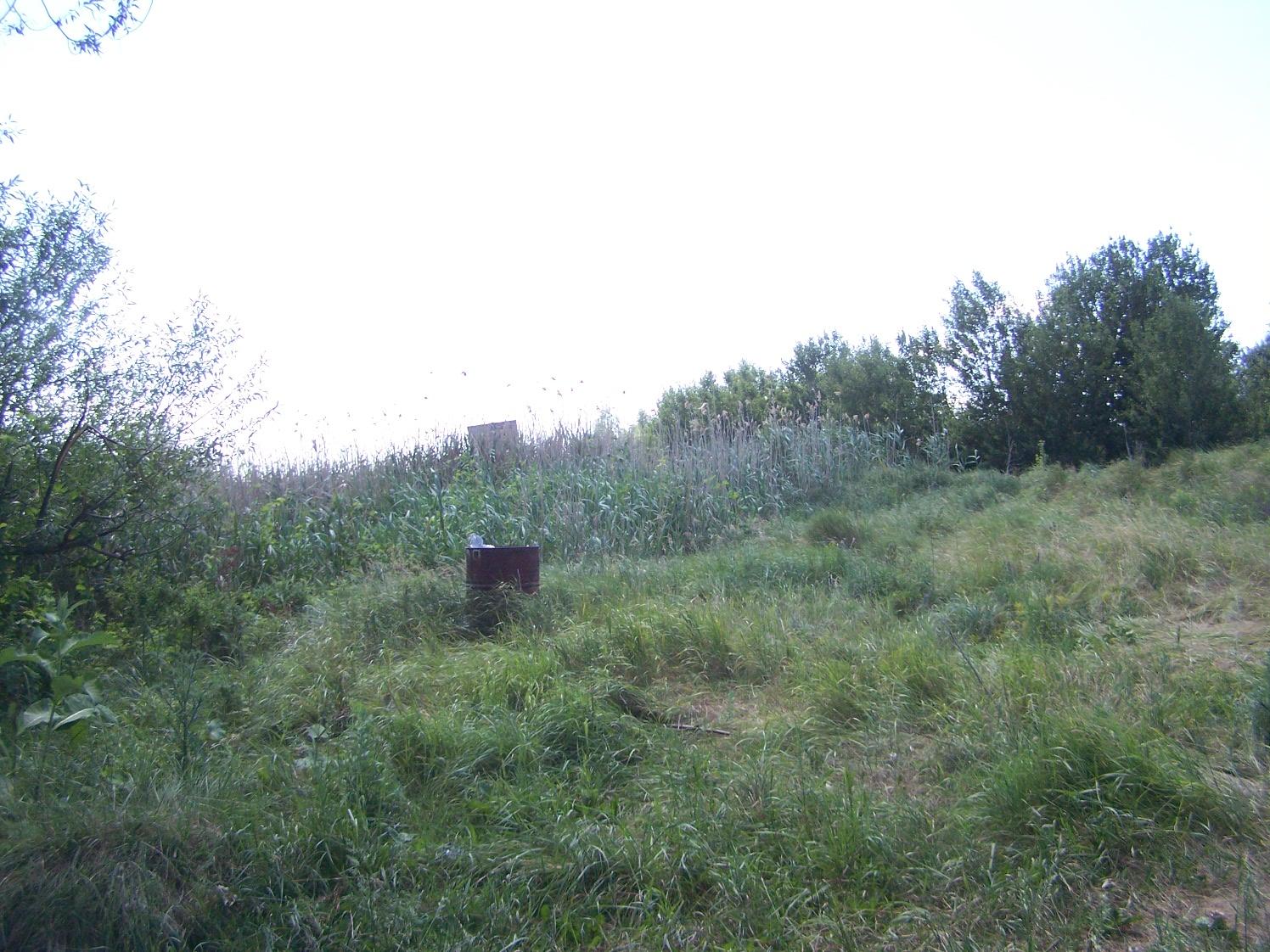 Афанасьевские пруды