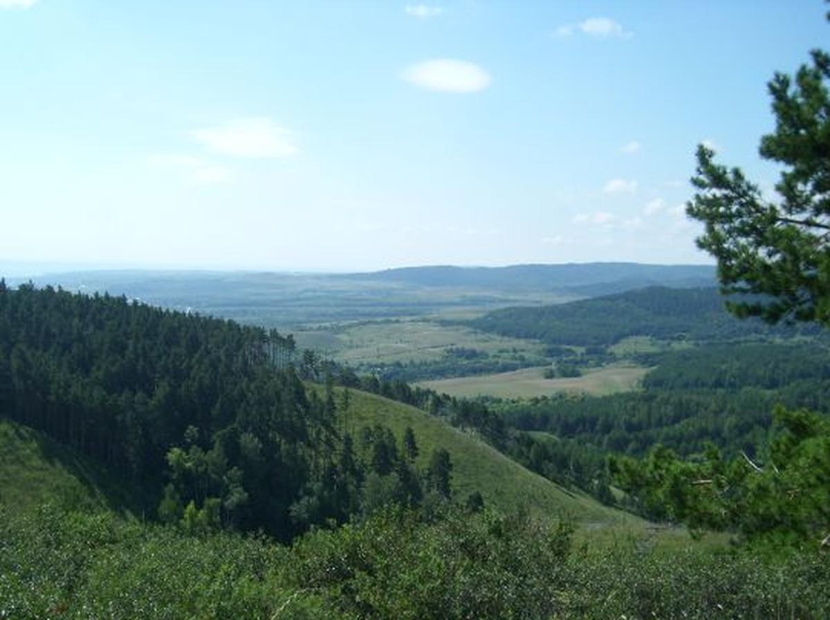 Хвалынский национальный парк