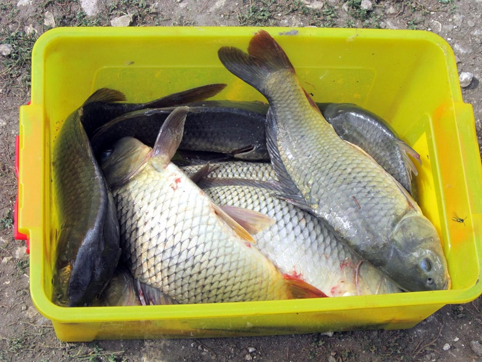 "Рыбалка ""На Калинихе"""