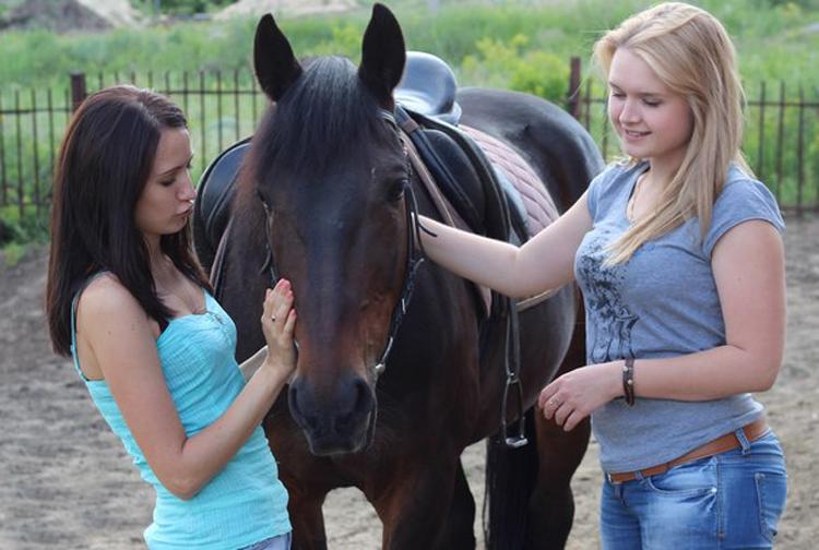 Прогулки на лошадях Лавка Чудес