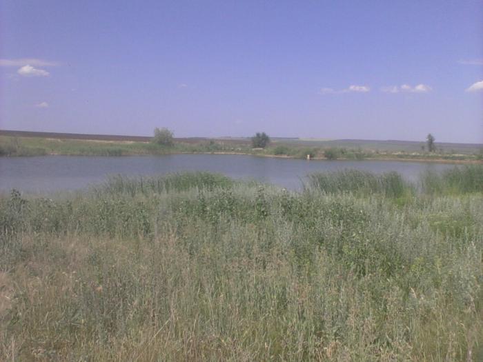 Скатовский пруд